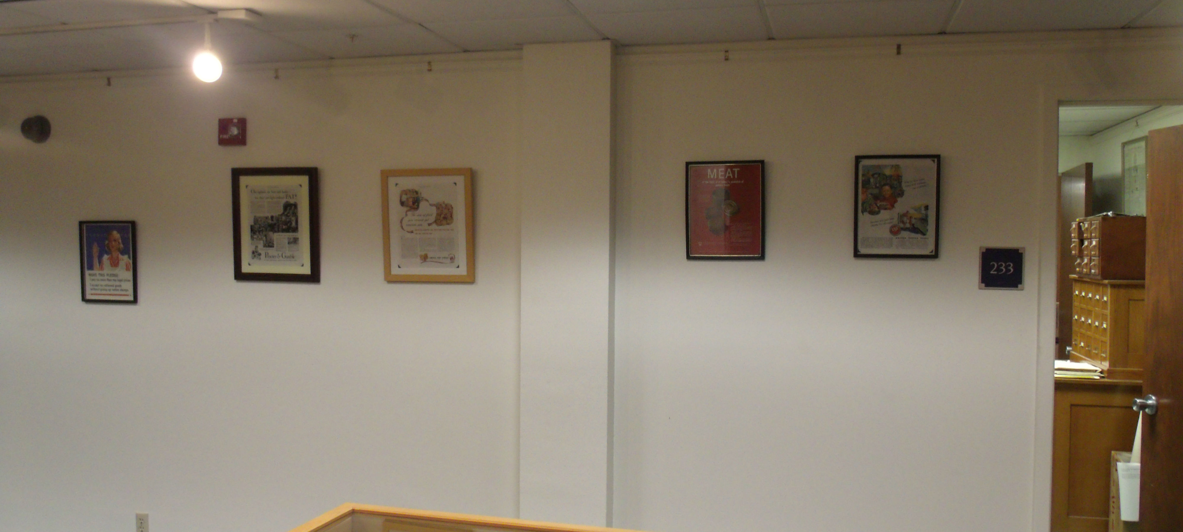 MSU Library Display